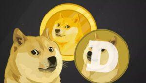Online Retailer Giant Newegg Starts Accepting Dogecoin