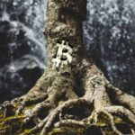 A Detailed Guide On Bitcoin Taproot Upgrade